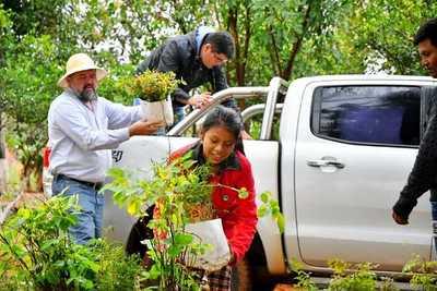 """""""Guaraní Sustentable"""" programa de apoyo para nativos"""