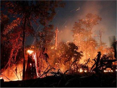 Redes mafiosas usan violencia para deforestar y quemar la Amazonía