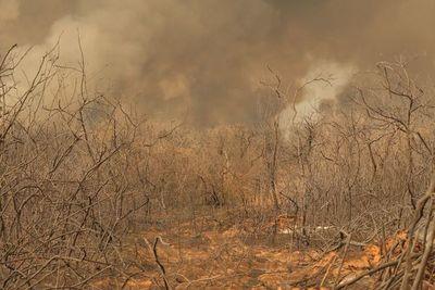 Infierno en el Norte: Luchan por aplacar incendios voraces