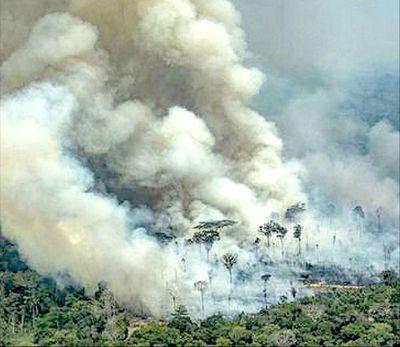 Los incendios de la Amazonia podrían quemar a Jair Bolsonaro