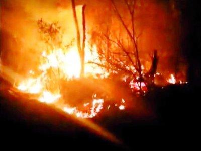 Pese al cambio de viento  sigue   activo el incendio en el  Chaco