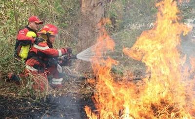 HOY / Sin plan, contener incendios forestales depende de lluvias