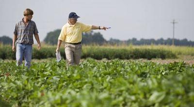 Gremio de pequeños productores agrícolas acompaña decisiones del Ejecutivo
