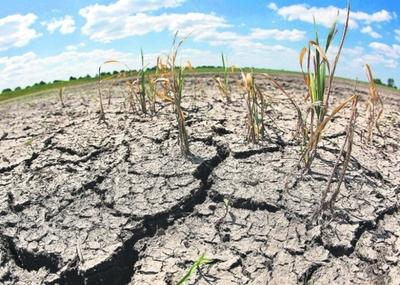 Chile declara emergencia agrícola por sequía en región de Atacama