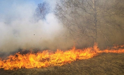 HOY / Quema de pastizales provocaron incendios: 15 estancias, en la mira de Fiscalía