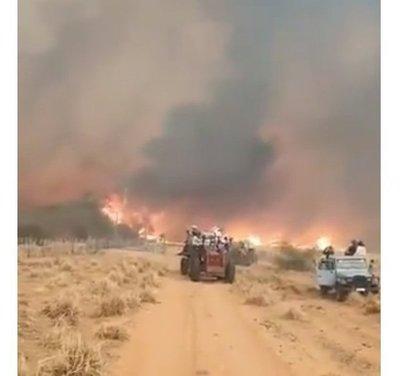 Productores, desesperados por avance del fuego en Alto Paraguay
