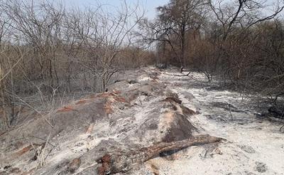 Pronostican bajo nivel de precipitaciones en el Chaco