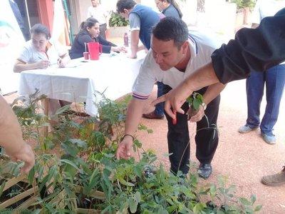 Con especies nativas, pobladores de Curuguaty reforestan casco urbano