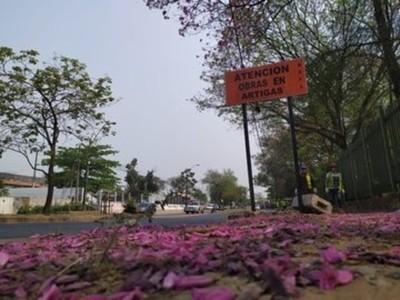Corredor Vial Botánico: anexión de territorio es positiva, dice directora