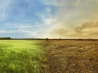 Comprometerse con el clima es una   apuesta arriesgada para las empresas