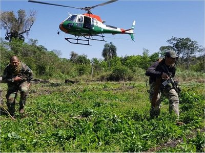 Destruyen 69 toneladas de cannabis en operación paraguaya junto con Argentina