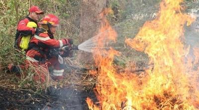 HOY / Disminuyen notablemente los focos de incendios en el Chaco