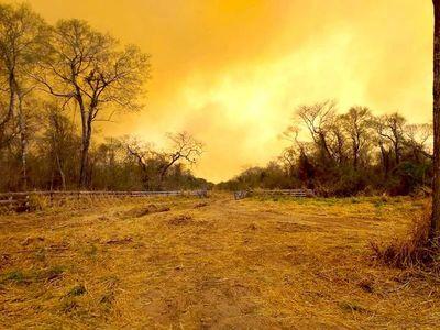 Principales focos de incendios se registran en Bella Vista y Chovoreca