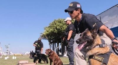HOY / Veinte perros expertos, de entre  10 a 15 mil dólares cada uno