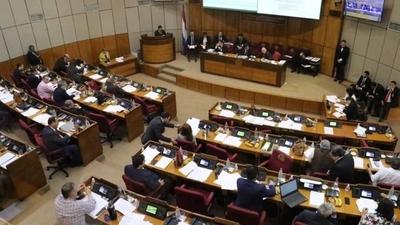 HOY / Senado acepta veto al proyecto Ñane Energía