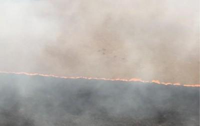 Se incendia uno de los parques nacionales más antiguos de Brasil