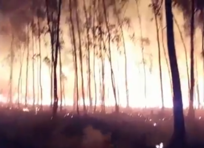 Siguen los incendios forestales