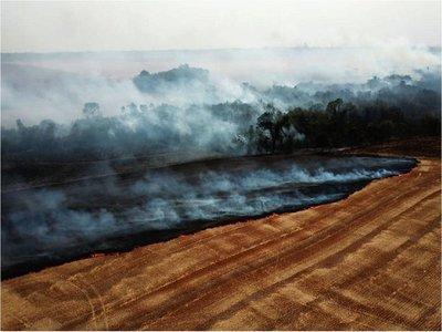 Arde Paraguay:  Fuego arrasa  a su paso