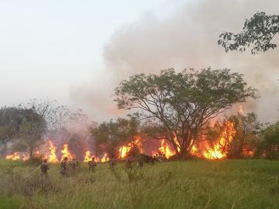 Incendio en Parque Guasú: Fiscal investiga la identificación de responsables