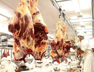 El volumen de exportación de carne tuvo una caída del 10,3%