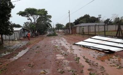 Árboles caídos, cables sueltos y corte de energía tras tormeta