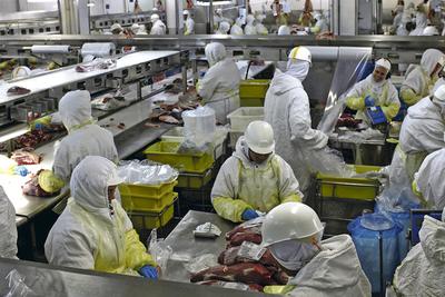 Vuelan las acciones de los grupos frigoríficos brasileños