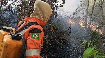 """Ministra de Agricultura de Brasil critica la """"desinformación"""" sobre la Amazonía » Ñanduti"""