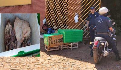 Incautan carne de carpincho que era comercializada
