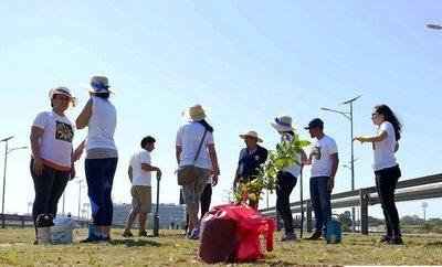 Servicios, plantación de arbolitos y curso de señas en Luque •