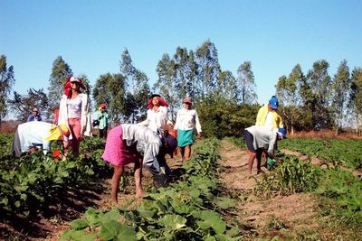 Día de la Mujer Rural: Acceso a educación, salud y economía sigue siendo el principal reclamo