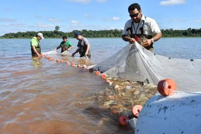 MADES confirma fechas de veda pesquera