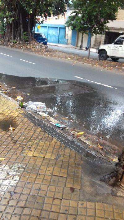 Cientos de litros de agua son desperdiciados