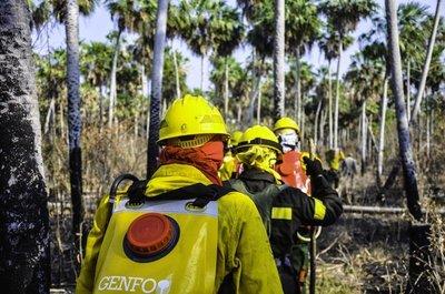 Inundaciones e incendios en el año requirieron de respuesta coordinada de la SEN y organismos del Estado