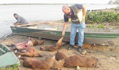 Detienen a pescador con carpinchos faenados