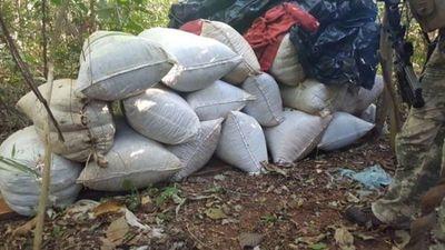 Hallan 9,8 toneladas de marihuana en establecimiento de Capitán Bado