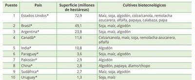 Paraguay, firme en el uso de biotecnología