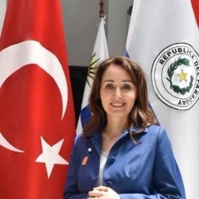 HOY / Turquía justifica ofensiva militar en Siria y espera apoyo de Paraguay