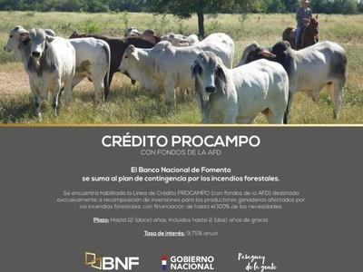 BNF habilita crédito para productores pecuarios afectados por los incendios forestales