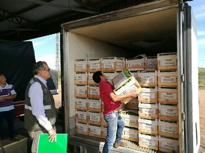 Senave dispuso nuevos lineamientos para el traslado de productos vegetales