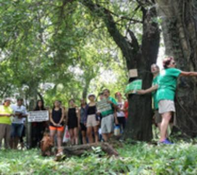 """""""El Botánico No Se Toca"""" denunciado por el MOPC"""