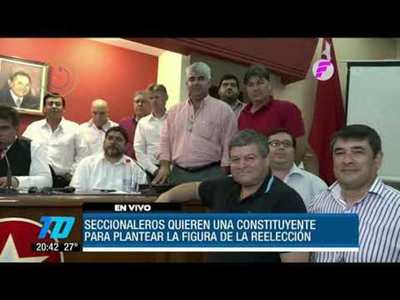 Seccionaleros buscan la reelección presidencial