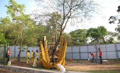 Inicia traslado de árboles del Jardín Botánico para obras