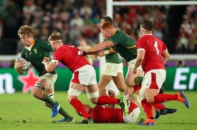 Sudáfrica venció a Gales y chocará contra Inglaterra en la final