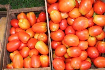 Mañana y pasado habrá remate de tomates nacionales a G. 3.500 por kilo