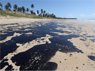 Brasil prohíbe pesca de camarón en áreas afectadas por petróleo