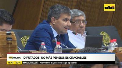 Diputados: No más pensiones graciables