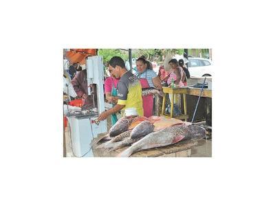 Comercialización de pescados continúa hoy en la Costanera