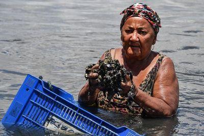 Cinco barcos, uno de ellos griego, son sospechosos de marea negra en Brasil