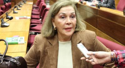 """Parlasurianos integran comisión para la revisión del Anexo """"C"""" del Tratado"""