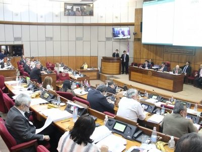 Senado da media sanción a suba del déficit fiscal para 2020